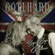 Gotthard Bye Bye Caroline (feat. Francis Rossi) [Radio Edit]