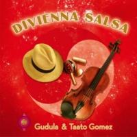 Gudula & Taato Gomez Divienna Salsa