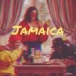 TheColorGrey Jamaica