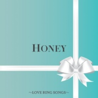 DJ FLY 3 HONEY ~LOVE RING SONGS~