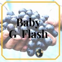 Baby G Flash BABY G FLASH