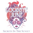 Goodbye June Live In The Now