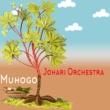 Johari Orchestra