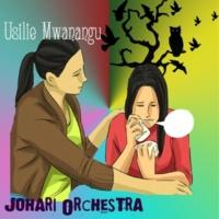 Johari Orchestra Usilie Mwanangu
