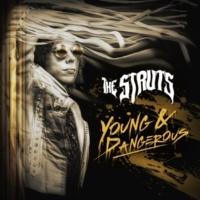 ザ・ストラッツ YOUNG&DANGEROUS