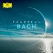 エマーソン弦楽四重奏団 Peaceful Bach