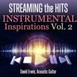David Erwin Streaming the Hits: Instrumental Inspirations, Vol. 2
