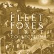Fleet Foxes Sun it Rises