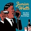 JUNIOR WELLS The Best Delmark Recordings