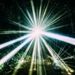 フレデリック LIGHT