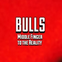Middle Finger to the Reality BULLS