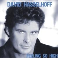 David Hasselhoff Summer in The City