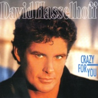 David Hasselhoff Freedom For The World