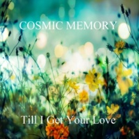 COSMIC MEMORY Till I Get Your Love
