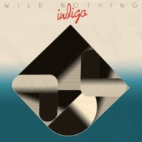 WILD NOTHING Partners In Motion