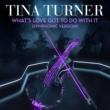 Tina Turner What's Love Got to Do With It (Symphonic Version)