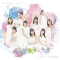 つばきファクトリー first bloom