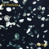 Mr.medusa Ave verum corpus ~favorite46~