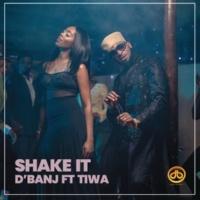 D'Banj Shake It (feat. Tiwa Savage)