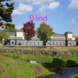 Riz Blind