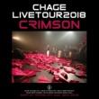 Chage ふたりの愛ランド [Live]