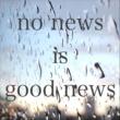 寒椿 no news is good news