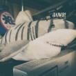 錠司 JAWS!