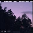 Andrey Azizov/loren north Bad Timing (feat.loren north) [Madnap Remix]
