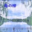 澤山 晋太郎 雨の柳 feat.Chika