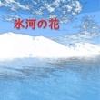 澤山 晋太郎 氷河の花 feat.Chika