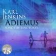 アディエマス/カール・ジェンキンス/ロンドン・フィルハーモニー管弦楽団/ミリアム・ストックリー 静寂