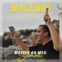 Waguinho Motivo do Meu Samba