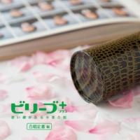 鈴木 規子 夢の世界を(ピアノカラオケ)