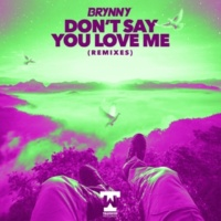 Brynny Don't Say You Love Me [Remixes]