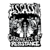Assassin Chronicles of Resistance