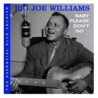 Big Joe Williams Baby Please Don't Go