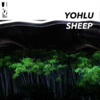 YOHLU SHEEP