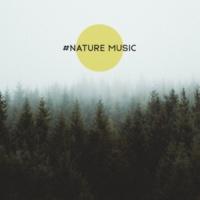 Nature Sounds Artists #Nature Music