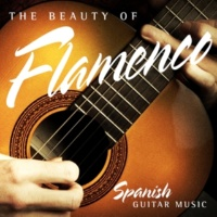 Various Artists The Beauty of Flamenco: Spanish Guitar Music