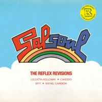 Various Artists The Reflex Revisions