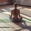 Chakra's Dream|Autogenes Training Academy Lotus Pose