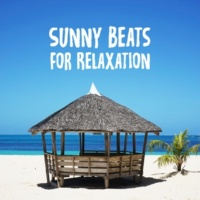 Chilled Ibiza Sunny Beats for Relaxation