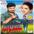Umesh Shah feat. Ravikant Yadav Dil Deewana Ho Gaya