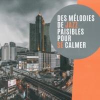 Smooth Jazz Band Des mélodies de jazz paisibles pour se calmer