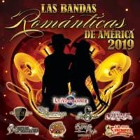 Banda Carnaval Ya Me Vi Contigo