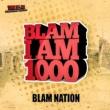 Blam Nation feat. Jay Varcity Stripper
