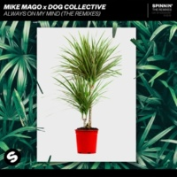 Mike Mago x Dog Collective Always On My Mind (The Remixes)