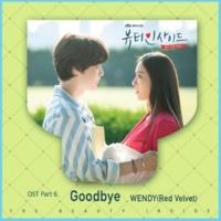 WENDY Goodbye