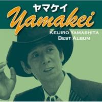 山下敬二郎 ヤマケイ yamakei