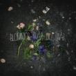 GAMMAL Blommor där du står